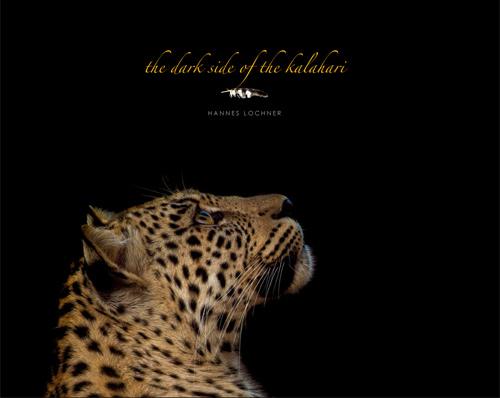 DSOTK-cover